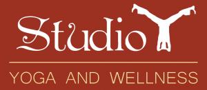 Studio Y Logo